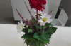 Floristisches Gestalten im BVJ
