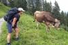 5. Platz Frau Grafe • Urlaub mit einer Kuh