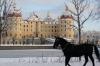 2. Platz Frau Grafe • Moritzburg im Winter