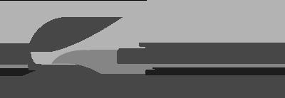 Logo Landkreis Mittelsachsen