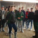 Vorschaubild des Artikels Von Kälbern, Milchkühen, Wurst und Fleisch – eine Fachexkursion zur AG Memmendorf
