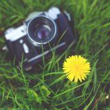 Vorschaubild des Artikels Sieh mal an! Gewinner des Fotowettbewerbs stehen fest
